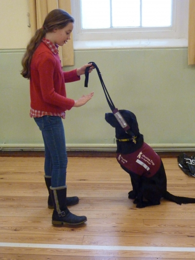 2013 Charity - Hearing Dogs for Deaf People